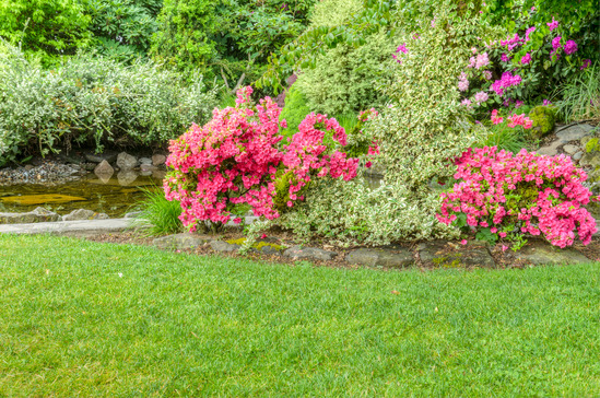 Landscaping Leads